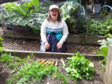 growing carrots in our raised beds
