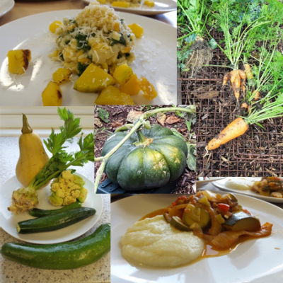 autumn veg and delicious meals