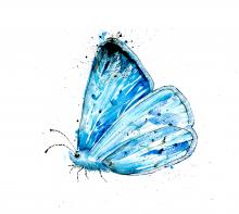 holly blue butterfly print